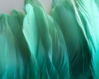 OMBRE GOOSE  FEATHERS ,  Two Tone Fresh Mint Green / 646