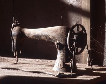 Silent Singer - Bodie, California ghost town - home, office, den, wall decor