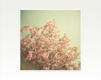 Blossom Photography, Flower Art, Peach, Pink, Olive Green, Rustic Home Decor, Dreamy and Feminine - The Day is Done