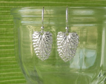 Catmint Leaf Earrings - Pure Silver Real Leaf, Herb Jewelry, Gift for Cat Lover