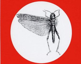 THE LOCUST - original 2001 vinyl sticker
