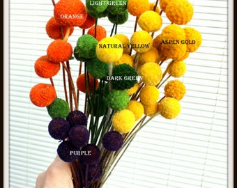 20 Purple Craspedia Short stems-Billy Balls-Billy Buttons-Purple Wedding Flowers-Bundle of 20 Dried on shorter stems
