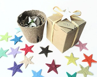 12 Unique Birthday Party Favor Garden Star Sets, Boy Girl Pink Blue Stars