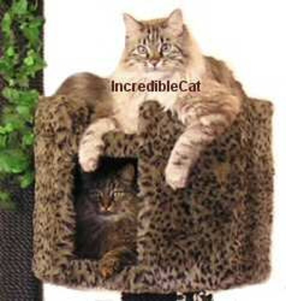 High End Cat Furniture 4 39 High Boulder Best Cat Beds
