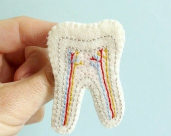 Tooth Cross Section Brooch