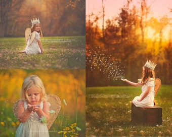 Linen Wings - Shabby Chic with Vintage Flare - Toddlers Girls - Photography Prop
