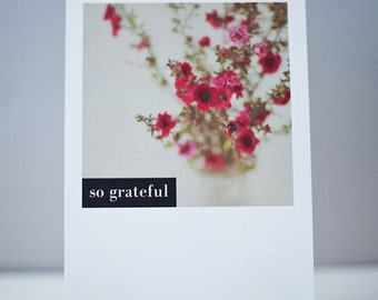 Grateful Note card - So Grateful note card - Photography note cards -  Red Flowers, Window still life - Set of 2 Note cards