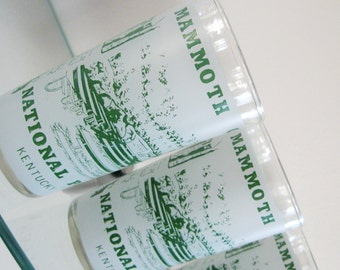 Vintage Souvenir Glasses Kentucky Mammoth Cave National Park Collectable Green 1960s