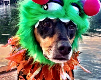 Little Monster Costume Hat and Pumpkinhead party collar for dogs and cats