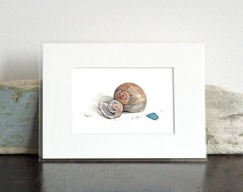 Sea Shells Watercolor Painting - Small Print