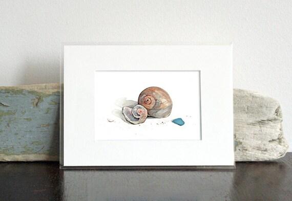 Sea Shells Watercolor Painting - Small Print