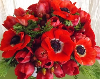 FALL 2016 PRE-ORDER - Early Bird Special - Prechilled Tulip Bulbs 'Spring Red Blend' - Ready to Grow Indoors Even in Winter, Great as Favor