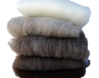 Shetland Black to White Ombre Batts - 5 ounces