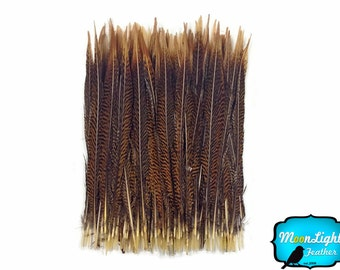 "USA Pheasant Feathers, 50 Pieces - 25-30"" Natural Golden Pheasant Tail Wholesale Feathers (bulk) : 3926"