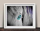 Black & White Magical Beauty Horse Photo Art Print for Horse Lovers Equine Child Rider