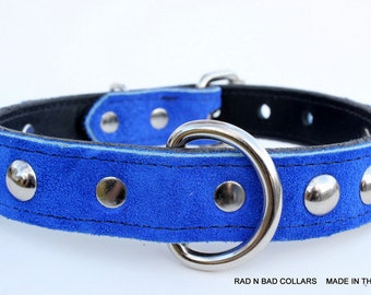 Royal Blue Suede Leather Dog Collar - Studded Blue Dog Collar - Blue Suede Leather Dog Collar, Leather Suede Collar, Small Blue Dog Collar