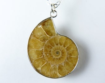 Genuine Fossil Necklace, Golden Crystal Ammonite Fossil Pendant Necklace with a Sterling Silver Chain