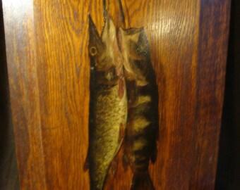 Wonderful fish painting on wood panel