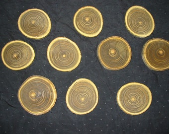 Sumac Wood Tree Slice Coasters
