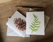 Fern and Pine Cone Woodland Notecards