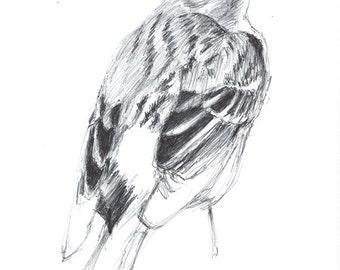 original Bird Ballpoint pen