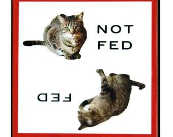 Funny Refrigerator Magnet, Cat Art, Stocking Stuffer, Cat Lover Gift, Tabby Cat, LOL Cats, Deborah Julian