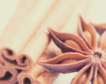 kitchen print, cinnamon sticks photo, star anise photograph, neutral photo print, food, baker, spice wall art, brown, autumn, photography
