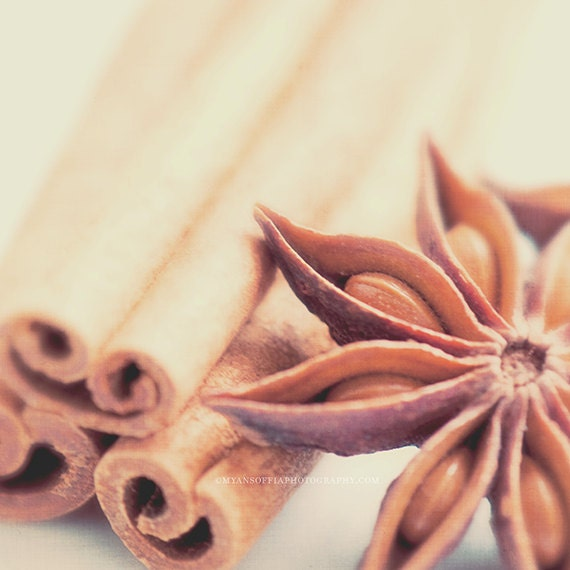 kitchen print, cinnamon sticks photo, star anise photograph, neutral photo print, food, baker, spice wall art, brown, autumn, photography