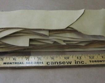 Garment Cowhide Leather Scraps  (Nick XV)