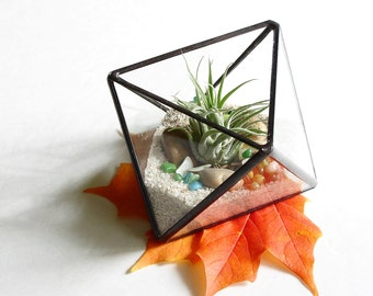 Small Air Plant Terrarium, Glass Octahedron Terrarium Planter