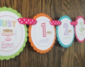 READY to SHIP PJs and Pancakes Collection: Just Born/0-12 Mos Banner Monthly Photo Banner. First Birthday Banner. Pancakes. Pajamas. Girl.