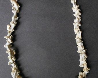 """Northwest Coast Shaman Bone necklace. 24"""" LONG"""