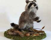 Raccoon Needle Felted Faux Taxidermy Animal Sculpture *Ready to Ship*