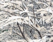 Winter Photography Fine Art Archival Print - Tree branches under heavy snow - Nature wall art home office decor. Snowing night in Evanston.