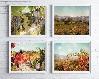 Harvest Season - FOUR PHOTO set, fall decor, wine country decor, vineyard vine, wine art, wine decor, california, napa valley, sonoma
