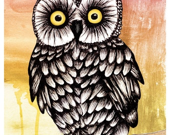 Baby owl drawing-print of original ink illustration
