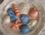 100 Chocolate Beach Seashells  - WEDDING CupCAKE Cake DECORATION  FAVORS  - Treats Birthday Party