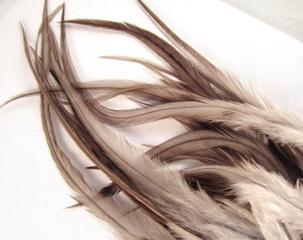 50  thick long feather slate gray 3 to 8 inches natural bulk feathers