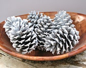 Snow White Pinecones - Wedding Decor, Craft Supply