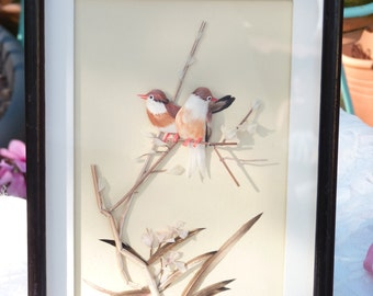 Vintage Feather Birds Artwork - White, Pink, Brown and Red Feathers - Framed and Mounted Behind Glass
