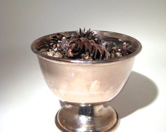 Silver Plated Bowl with Pedestal Base