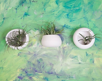 Set of Three Small Porcelain Wall Air Plant Homes, plants incuded, mix and match style and colors