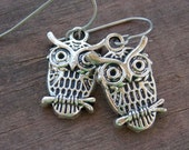 Titanium Earrings, Silver Owl Earrings, Hypoallergenic Titanium Ear Wires
