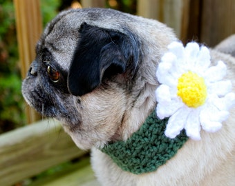 Daisy Neck Warmer for Dogs /  Made To Order