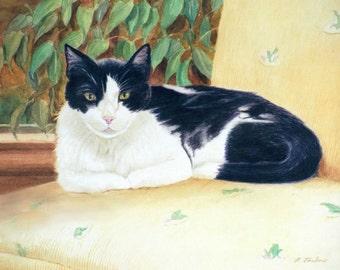 Black and White Cat Art, Cat Art Print, Tuxedo Cat Print, Cat Art, Cat Watercolor Tuxedo Cat Art from Painting by P. Tarlow