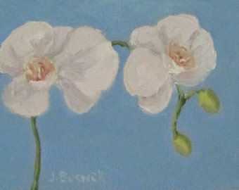 """Sale White Orchid  Oil Painting Original Modern Impressionist Floral Still Life Gift for Her Santa Barbara Jennifer Boswell 5x7"""""""