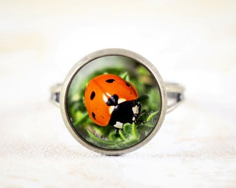 Red Ladybug Ring - Garden Jewelry Ring, Ladybird Ring, Bronze Adjustable Ring, Garden Bug Ring, Lady Bug Jewelry, Nature Ring