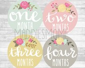 Baby Girl Month Stickers Monthly Baby Stickers, Milestone Baby Month Stickers, Monthly Bodysuit Vintage Floral (Cursive Floral)