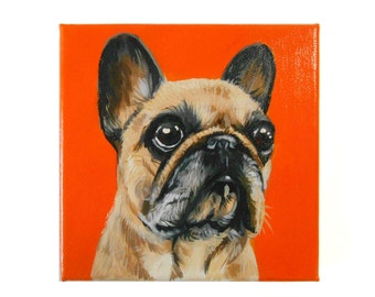 Custom Dog Portrait / Custom Pet Portrait -1 Pet Close-Up Solid background (6x6x0.75inch) Original Painting on Canvas