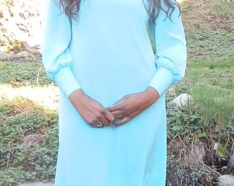 Vintage Knee Length Blue Dress